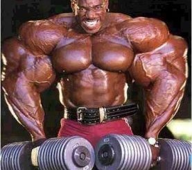 muscle-bound-steroids-277x300